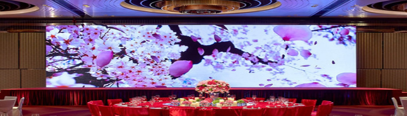 LED p10 p5 p2.5 Video and rental screens and panels